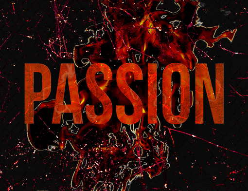 Can Passion Kill Your Career?